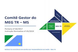 Comitê Gestor avalia o estágio de implantação do MEG Tr em órgãos públicos de MS